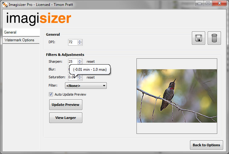 Batch Filtering Photographs and Images with multiple preview windows for comparison